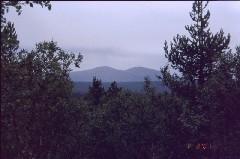 Nattaset Vintilätunturilta 1.8.2001