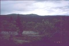 Ampupäät Pikkutunturien eteläpuolelta 1.8.2001