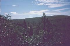 Kutturapäiden ja Lankopään välinen sola 4.8.2001