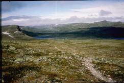 Polku kohti Meekoa 5.7.1984