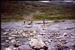 Vuomakasjoen ylitys 6.7.1984