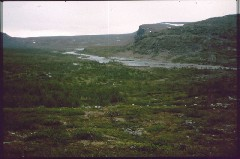 Vuomakasjoki ja Meeko 6.7.1984