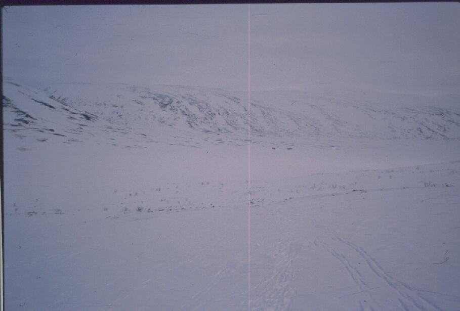 Salmikuru, Tierbmesjavrin tupa ja Jollaoaivin länsipuolinen etelärinne 13.4.1987