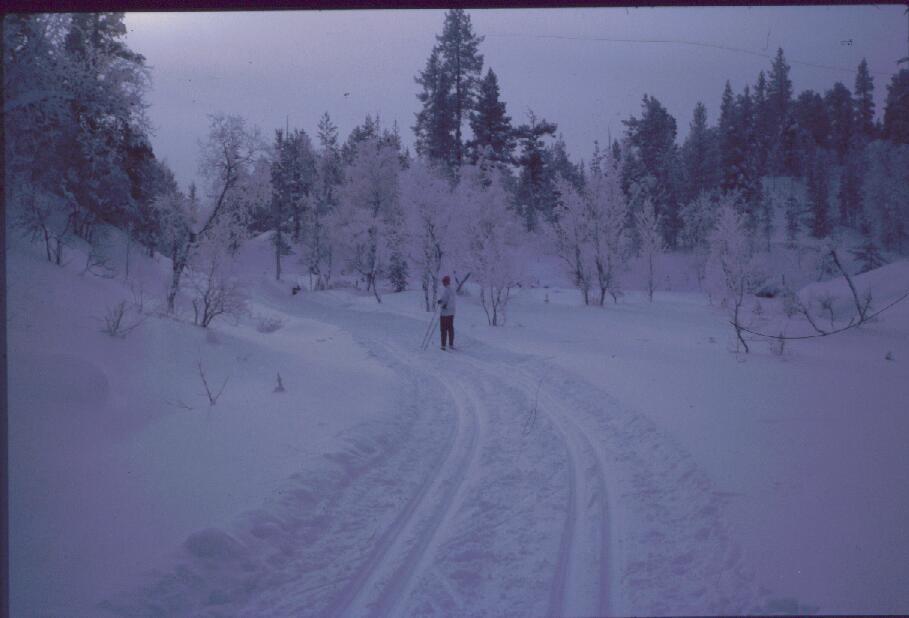 Latu Iisakkipään lounaisrinteillä 15.3.1985