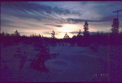 Kaamasenjoki 17.2.2002