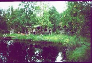 Hannukurun sauna 17.8.1983