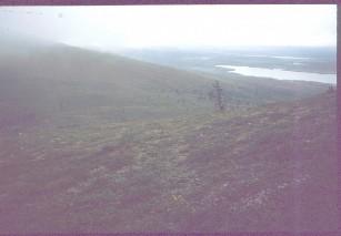 Lumikuru ja Keräsjärvi 17.8.1983