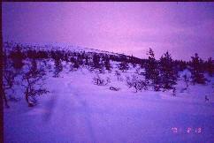 Vintilätunturin eteläinen nokka 19.2.2001