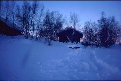 SusiKiisan sauna 19.2.2002