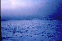 Nuvvos-Ailegakselta etelään 20.2.2002 klo 12.12