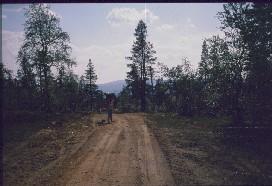 Anne ja Dacke matkalla kohti Vuongelinpuroa 20.7.1988