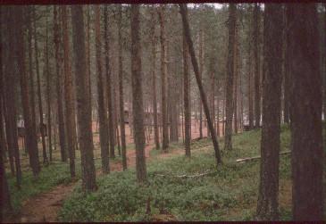 Ravadasjärven tupa  20.7.1989