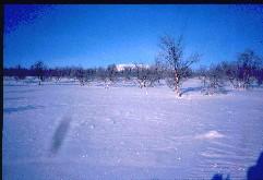 Nuvvos-Ailegas kaakosta 21.2.2002