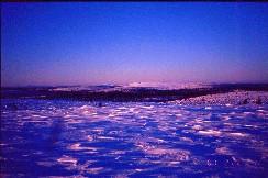 Pikkutunturin laelta länteen 22.2.2001
