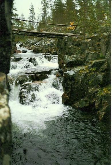Paasjoen silta 26.8.1995