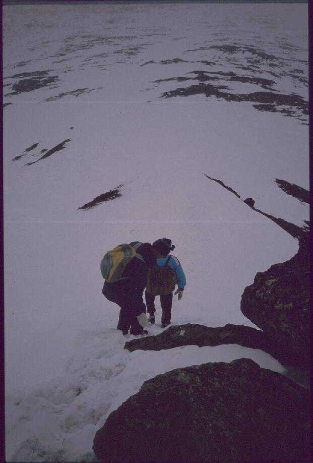 Saivaaralta alas 29.4.1989