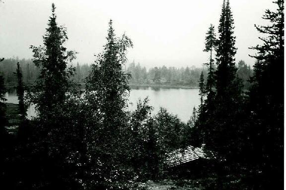 Kopsuslampi (Tammakkolampi) 29.8.1995