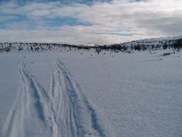 Fiellogeadggejohka Kevon luonnonpuiston entisen rajan paikkeilla 10.4.2004