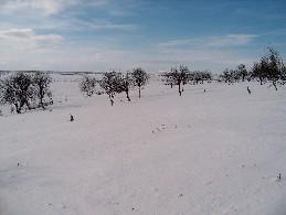 Uhca Linkinvarrin rinteiltä kuva kohti Paistuntureita (Gaimmioaivia) ja Guivia 12.4.2004