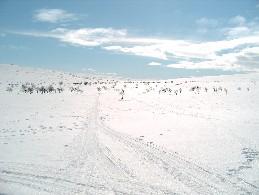 Kelkkaura Guivin tuvalta kohti Buordnavarrin ja Gamoaivin välistä solaa 26.4.2005