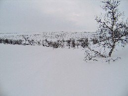 Reitti laskeutuu Fiellogeadggejohkalle 28.4.2005