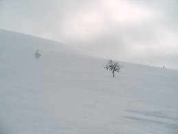 Njavgoaivin länsirinne 29.4.2005