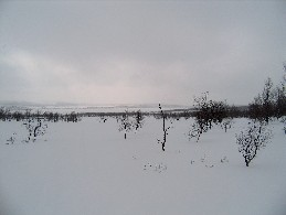 Luopmusjavrrit, Stuorrajavri 29.4.2005