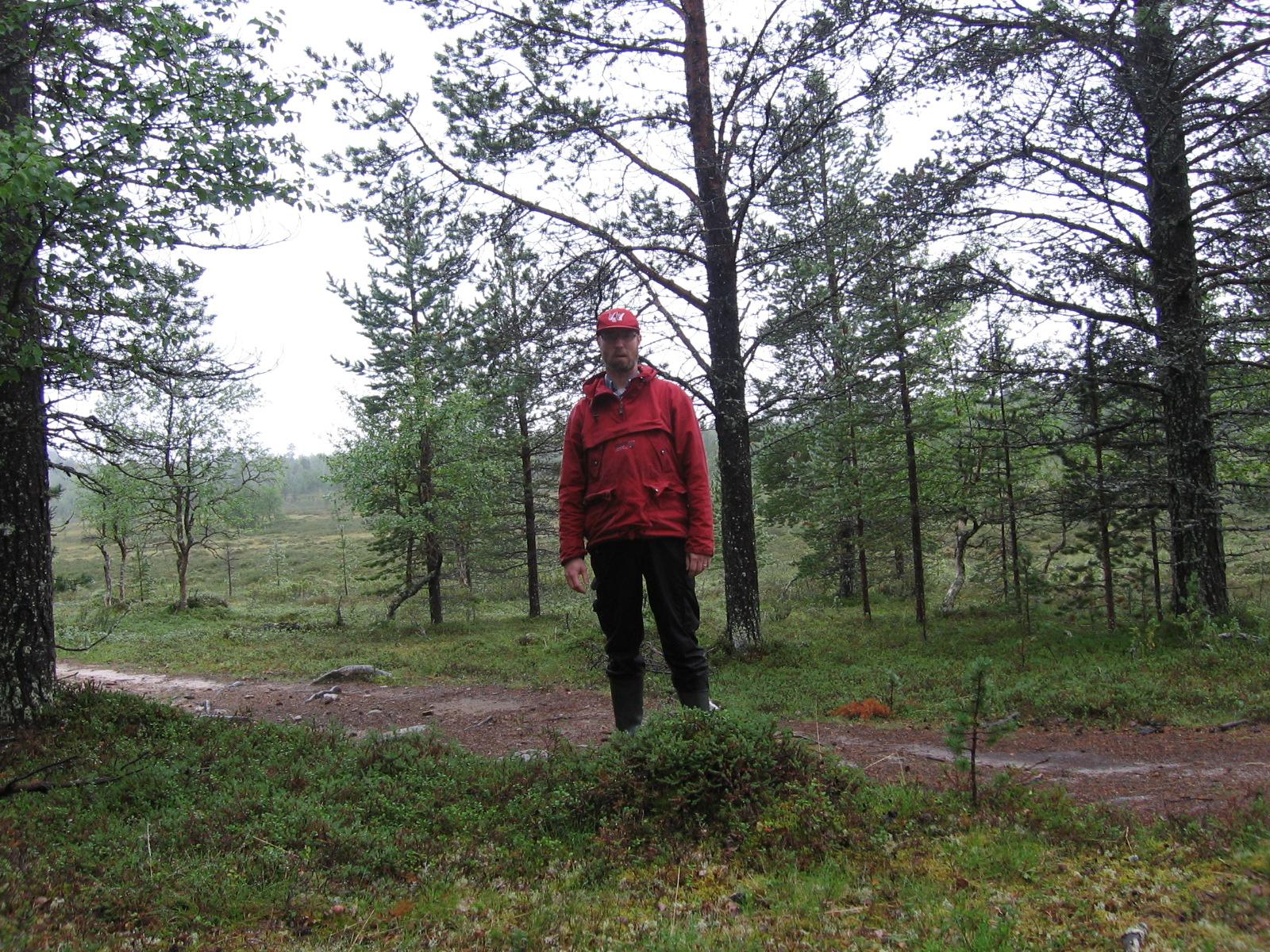 Oskarinnokan ja Majavajärven välisen suon viereinen ura  5.8.2010