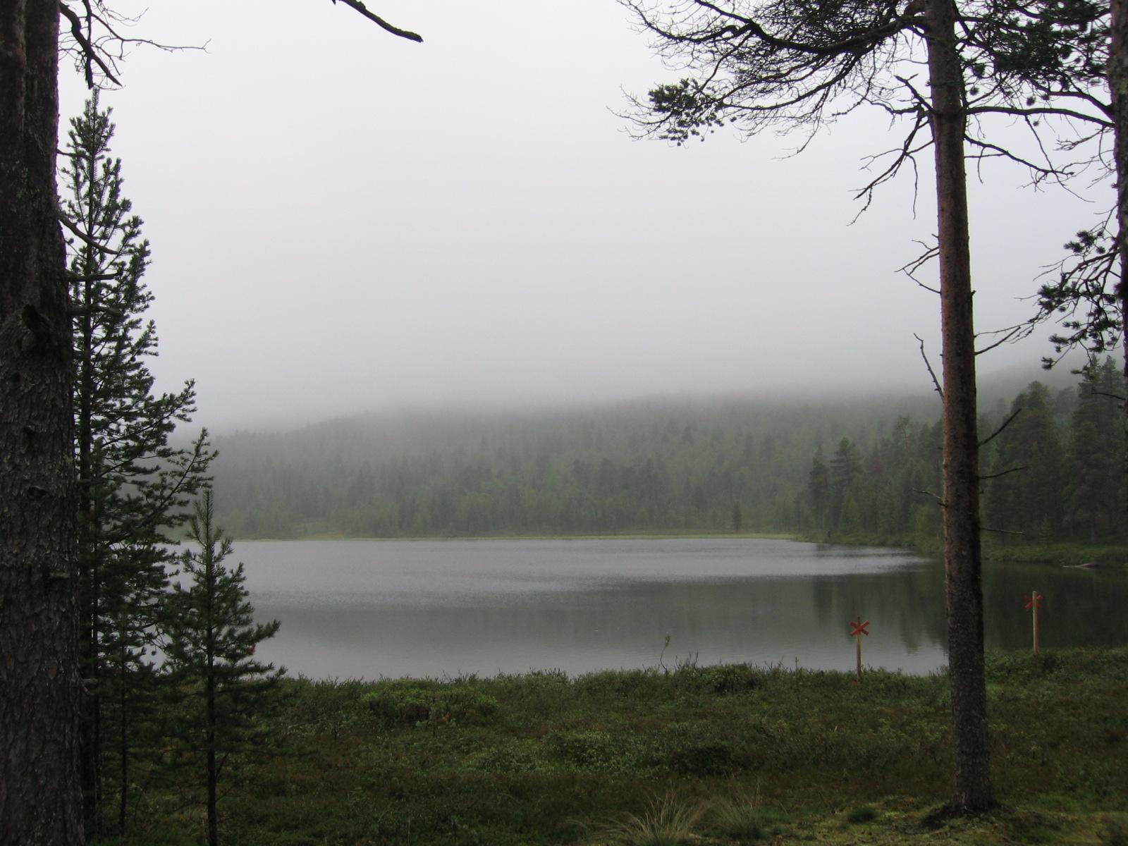 Kuoppajärvi 5.8.2010