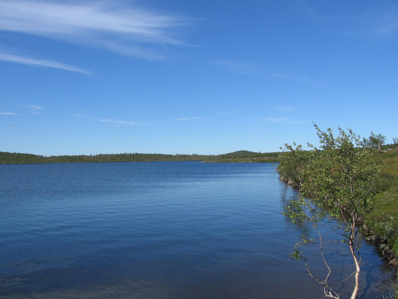 Kulvakkojärvi 6.8.2010