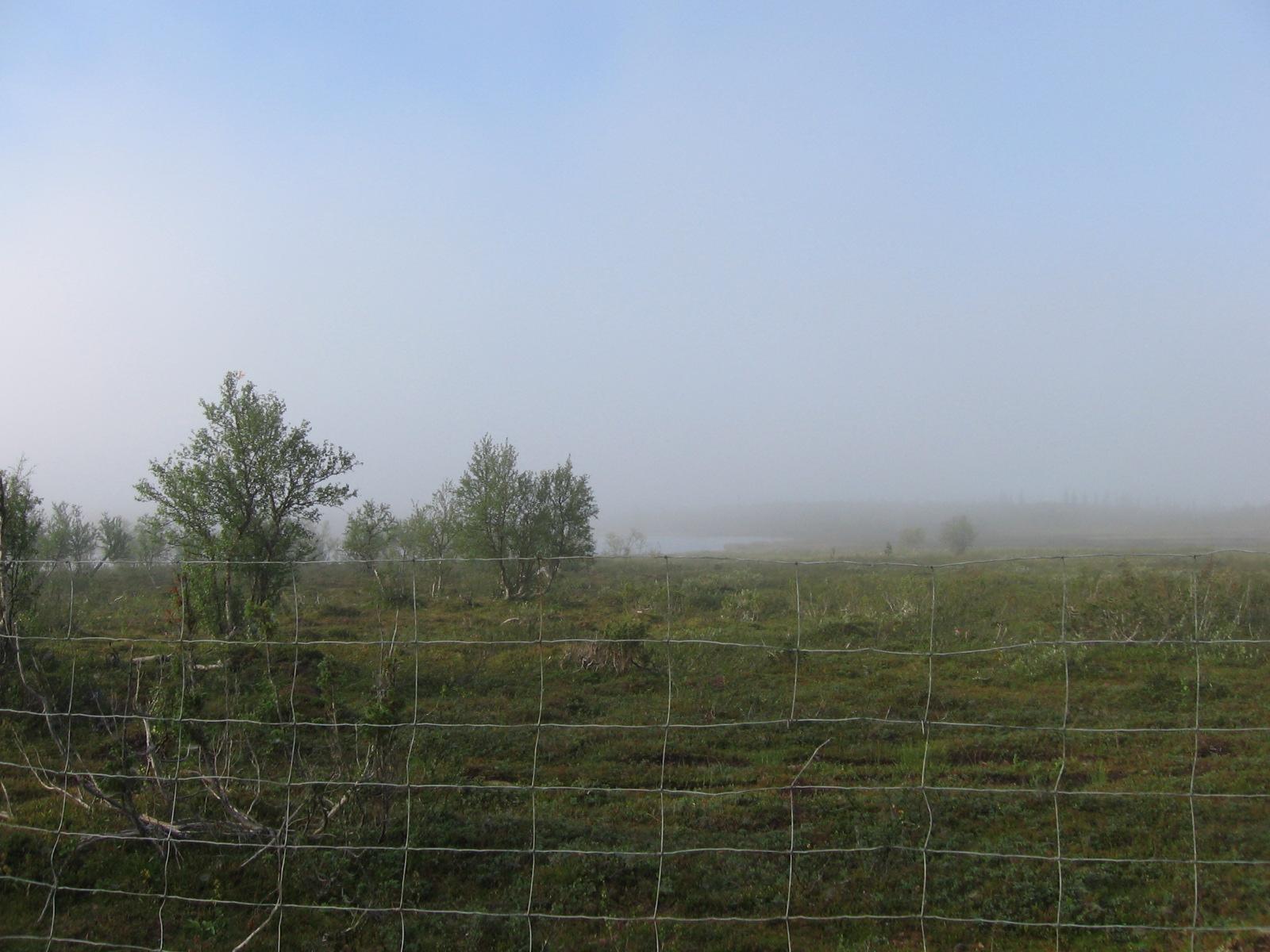 Poroaita Alimmaisen Taimenjärven ja Angalajärven välillä 8.8.2010