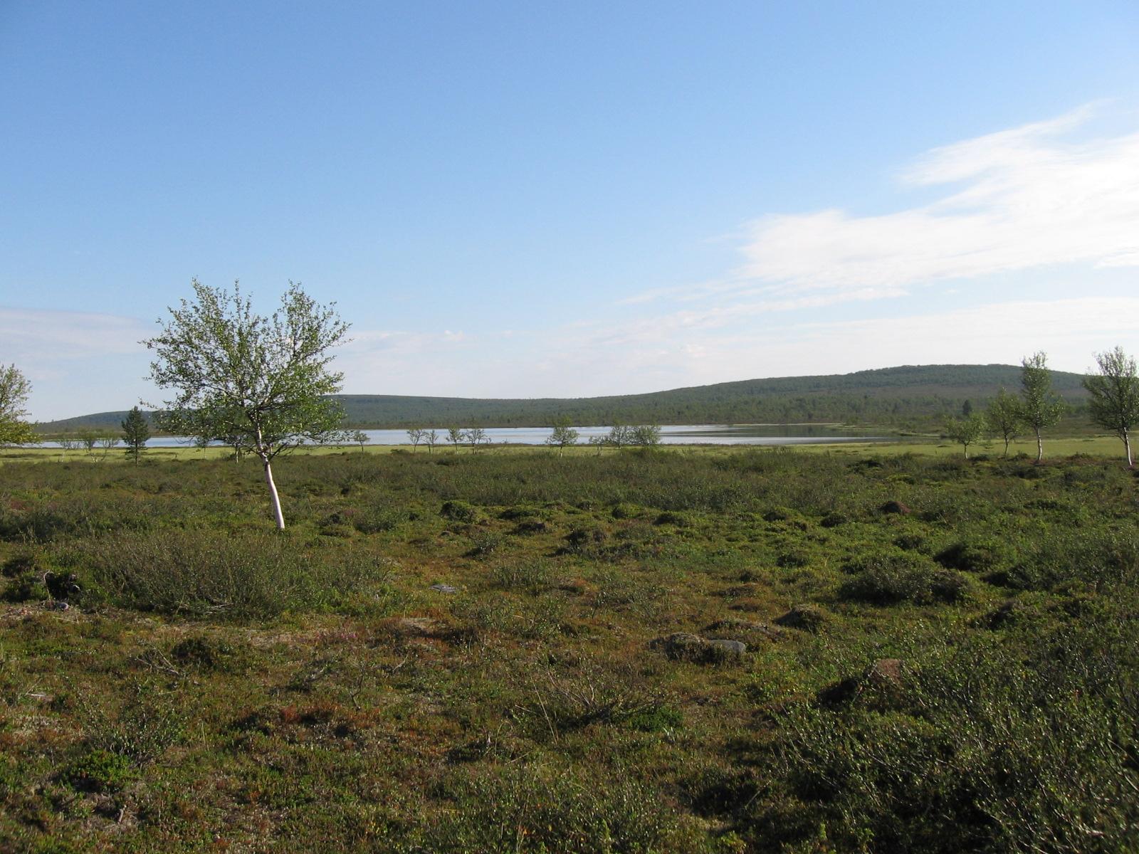 Angalajärvi 8.8.2010