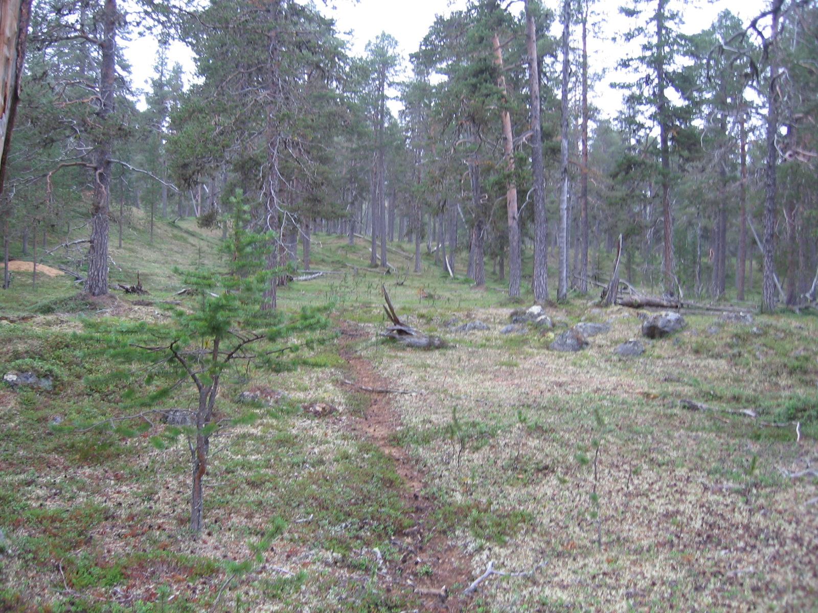 Outa-Suivakon rinteiltä 9.8.2010