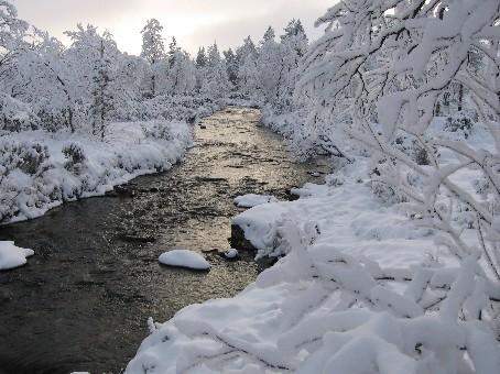 Rautuvanka, Kulasjoen alkulähteiltä 26.10.2006