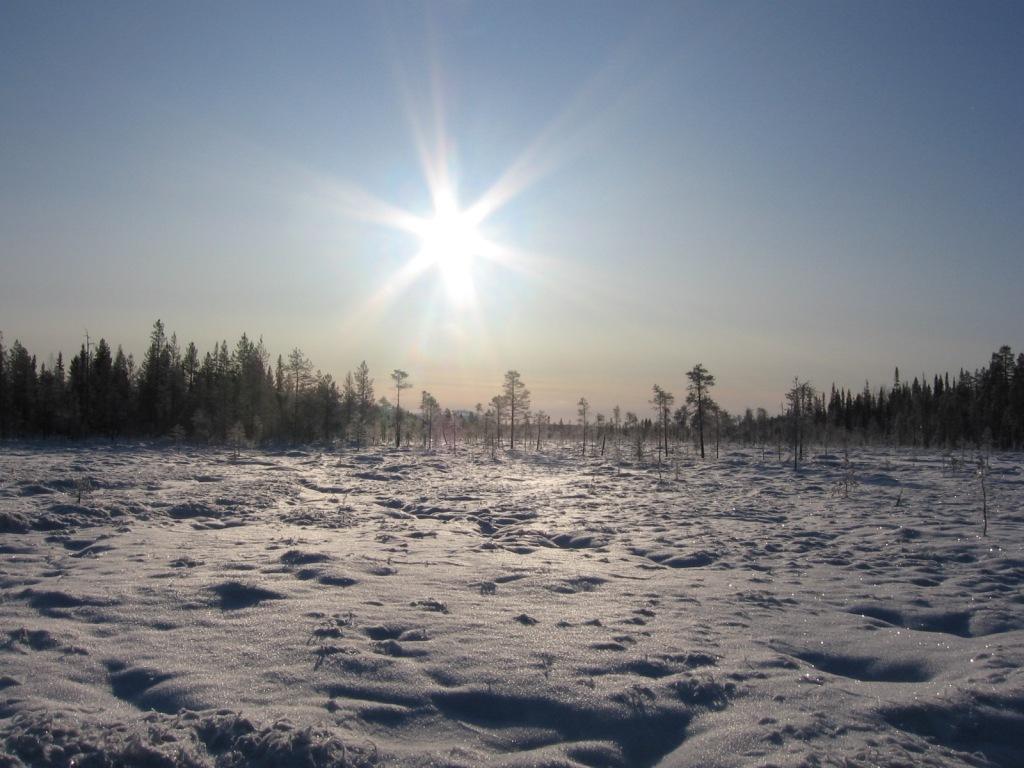 Jänkää Yli-Luostolta luoteeseen 13.10.2009