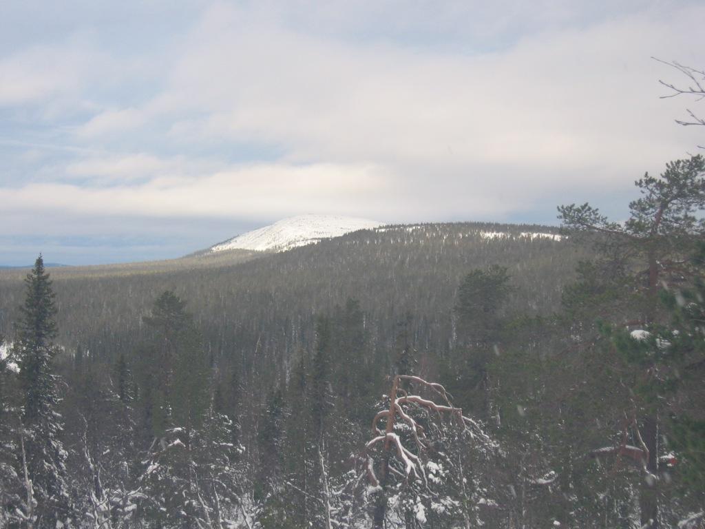 Ukko-Luosto Latvavaaralta 15.10.2009