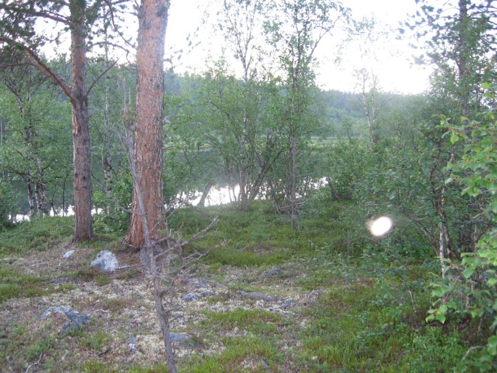 Inarijoki Kiestimänsuun paikkeilla 27.7.2007