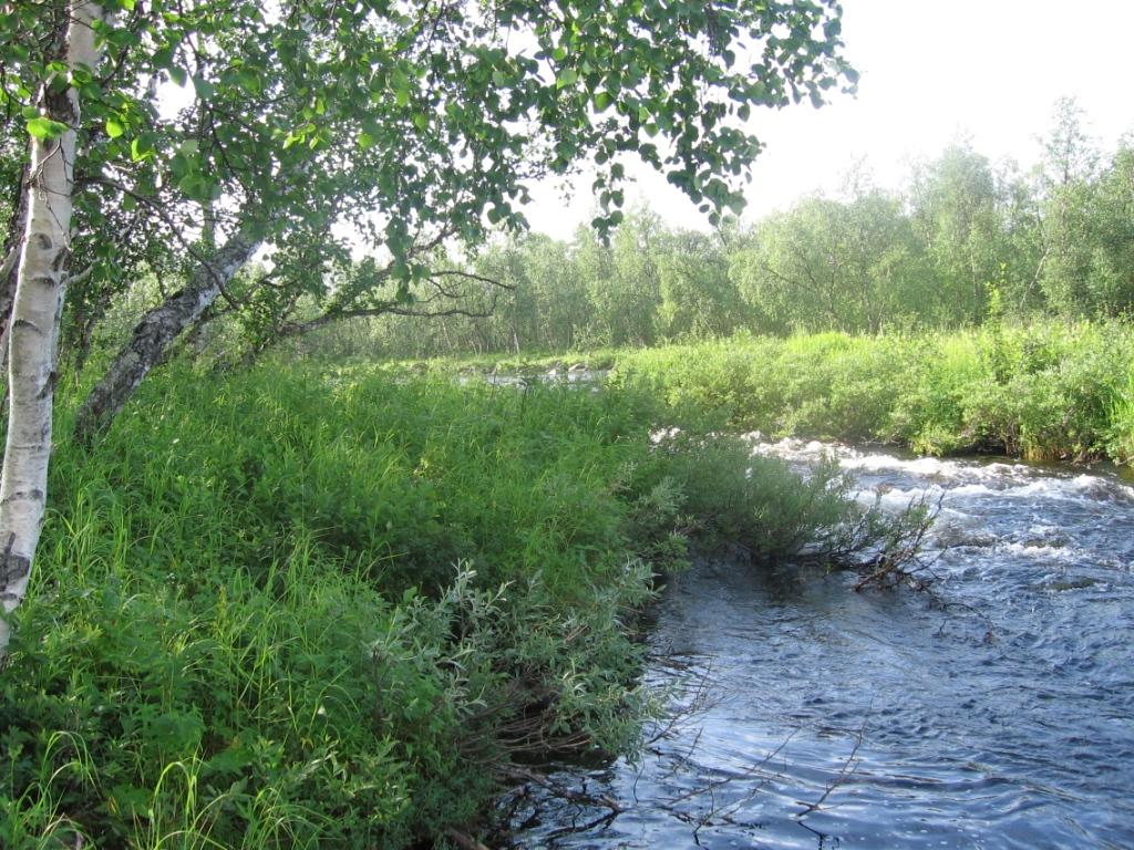 Kietsimäjoen laskukoski Inarijokeen 28.7.2007