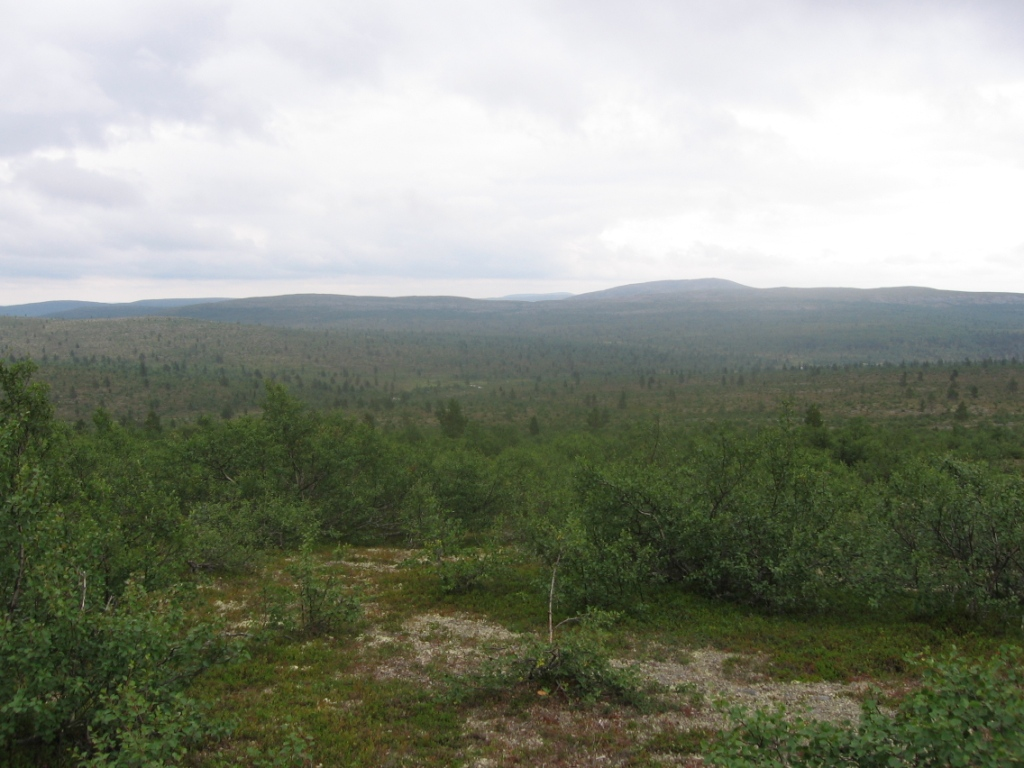 Ladnjoaivin rinteiltä Rahpesoaiville 31.7.2007