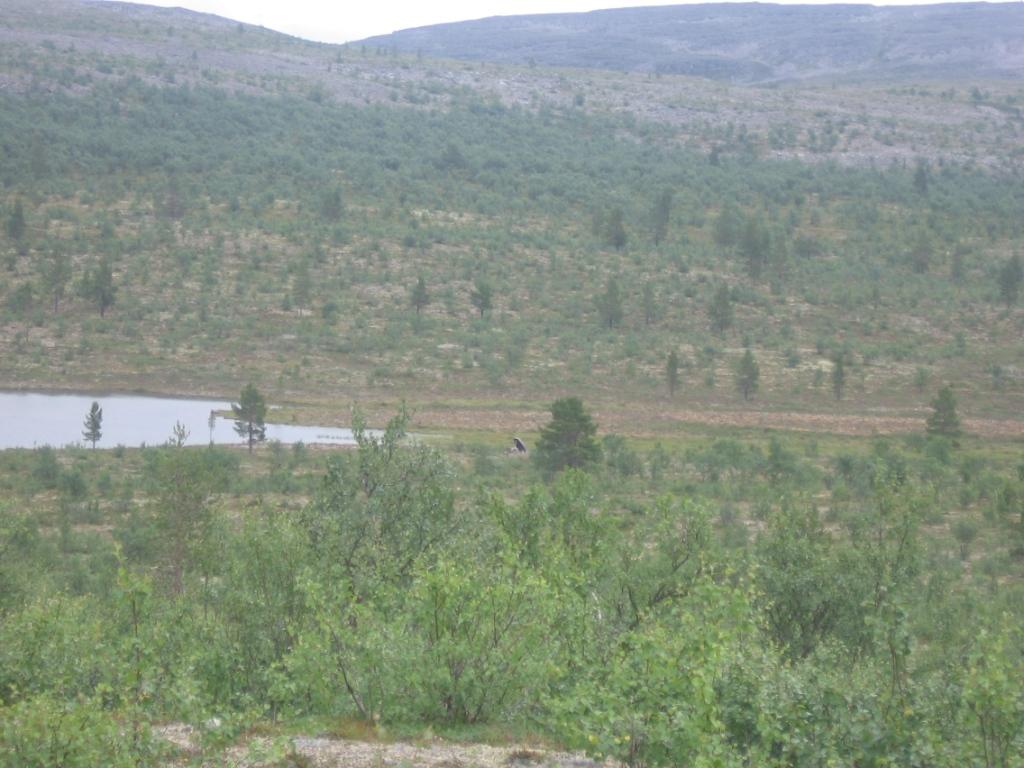 Lampi Soabbegeäldimoaivin ja Rahpesoaivin välissä 1.8.2007