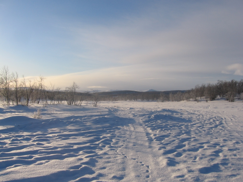 Muotkatunturit Piessuon-Luomusjoen soidensuojelualueen suunnalta 19.2.2008
