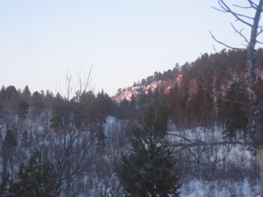 Guoldnajohkan varrelta, reilu km maantielle 23.2.2008