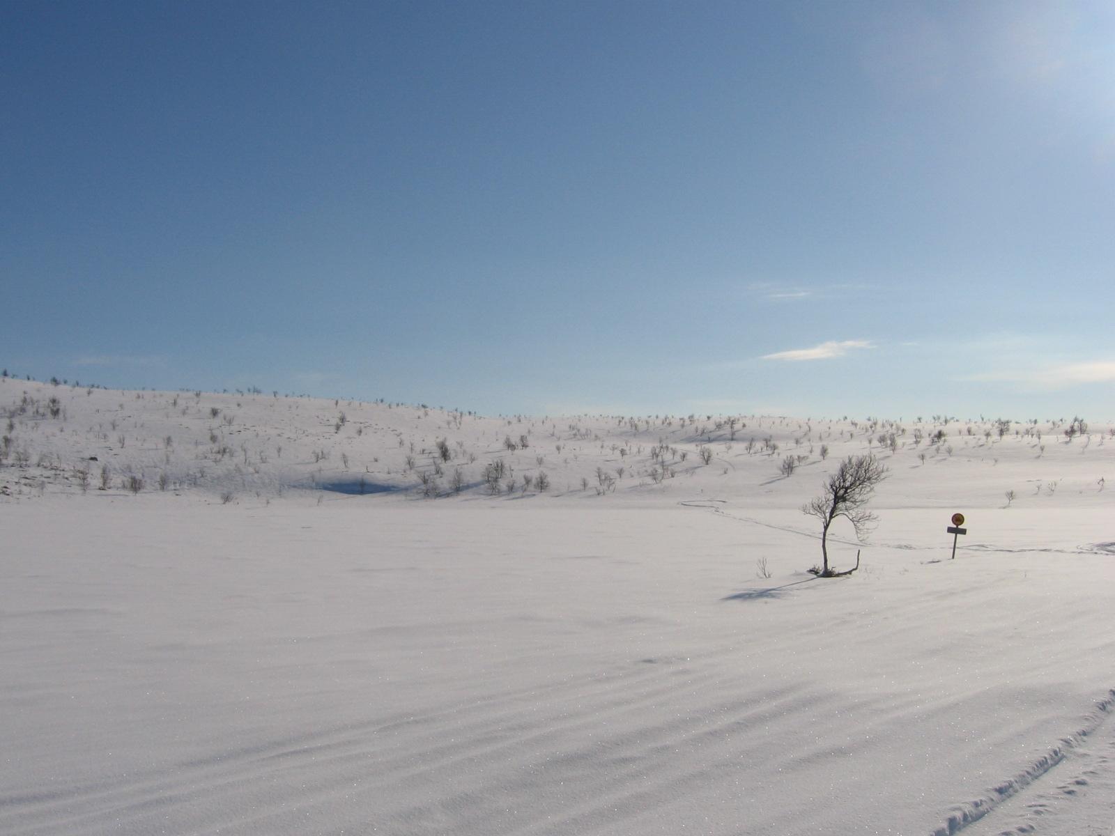 Talvireitillä liki Cuomasjavria 15.4.2010