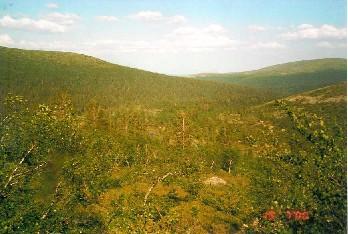 Kuotmuttipäältä pohjoiseen 19.7.2000