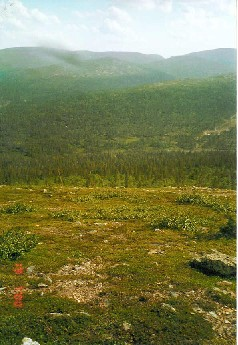 Kuotmuttipäältä Pirunporttiin päin 19.7.2000