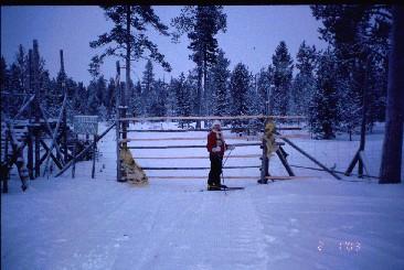 Poroaidan portti Hommakankaalla 2.1.2003