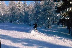Mikko Kaunispään Allirinteessä 16.2.2003