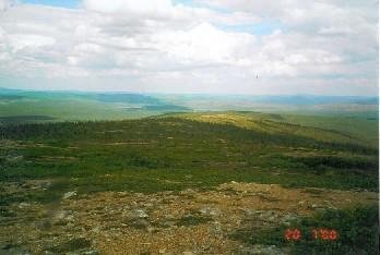 Kuotmuttipäältä pohjoiseen 20.7.2000