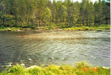 Suomun yli Aittajärven lähellä 20.7.2000