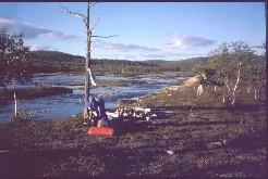 Yöpymispaikka Ylemmällä Honkavuomalla 30.7.2002